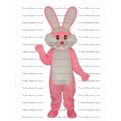 Buy cheap Rabbit mascot costume.