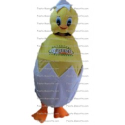 Buy cheap egg chick mascot costume.