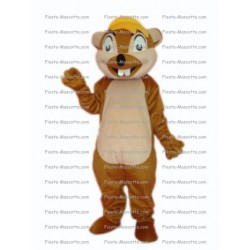 Buy cheap Squirrel ticking mascot costume.