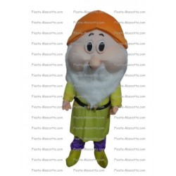 Buy cheap Snow white dwarf mascot costume.