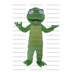 Buy cheap Lizard mascot costume.