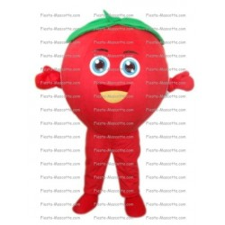 Buy cheap Tomato mascot costume.