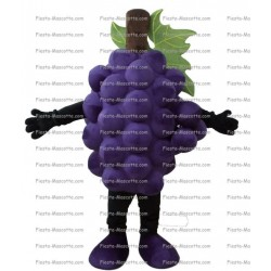 Buy cheap Grape mascot costume.