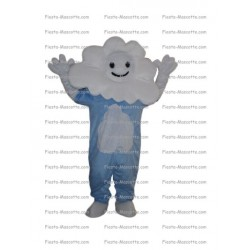 Buy cheap Cloud mascot costume.