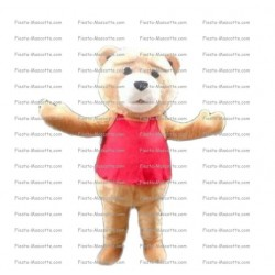 Buy cheap Ted Bear mascot costume.