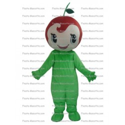 Buy cheap Fruit mascot costume.