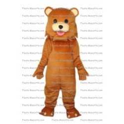 Buy cheap Bear Pedo bear mascot costume.