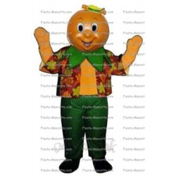 Buy cheap Orange mascot costume.