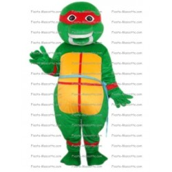 Buy cheap Ninja Turtle mascot costume.