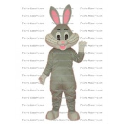 Buy cheap Rabbit Bunny mascot costume.